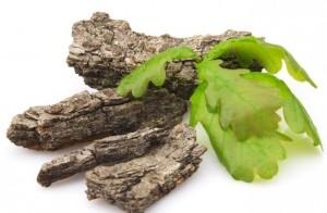 Настойка самогона на коре дуба или древесной щепе (рецепт)