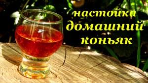 рецепты домашнего коньяка из водки, виноградного сока и пива