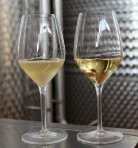 Как осветлить вино желатином в домашних условиях правила и пропорции